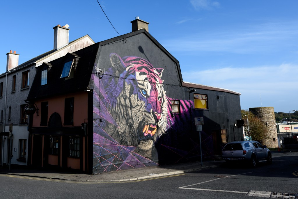 14. Winner - Waterford Walls International Street Art Festival